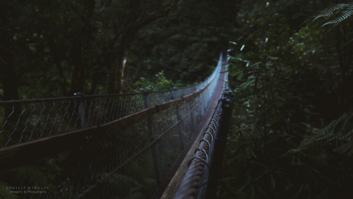 Exploring Kaitoke: Kaitoke Regional Park